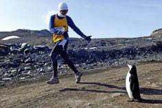 South pole marathon