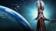 """Los Pulpos llegaron a la Tierra desde el espacio como cuerpos congelados          Los pulpos son """"extraterrestres"""" que evolucionaron en ..."""