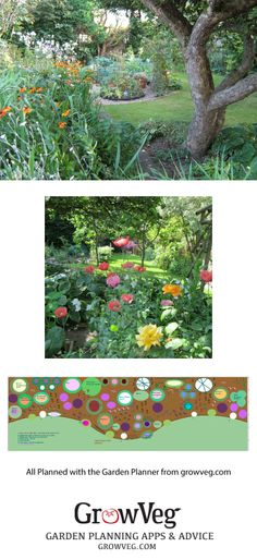 A year with the Garden Planner, plan for the big border….
