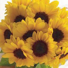 Sexta de arranjo solar!  #oitominhocas #floweroftheday #arranjofloral #girassol #decoração #flores #maiscor #tgifridays