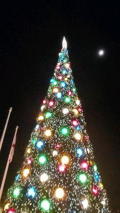 Christmas Getaways, Christmas Travel, Christmas Vacation, Outdoor Christmas, Mary Christmas, New York Christmas, Vector Christmas, Christmas Tree Themes, Christmas Scenes