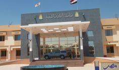 فحص أشجار النخيل في الوادي الجديد لمحاربة…: أكد الدكتور محسن عبدالوهاب مدير عام القطاع الزراعي في محافظة الوادي الجديد، أنه تم الانتهاء من…