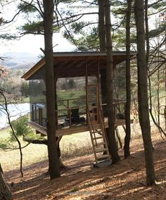 Screened Tree House from Love Where You Live: At Home in the Country: Joan Osofsky, Pole House, House Deck, Tiny House Cabin, Cabin Homes, Outdoor Rooms, Outdoor Living, Screened Gazebo, Screen House, Cool Tree Houses