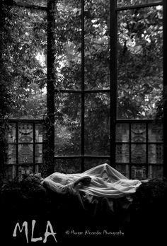 Silently Sleeping © Morgan Alexander