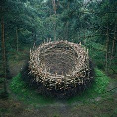 Nils-Udo, Nest