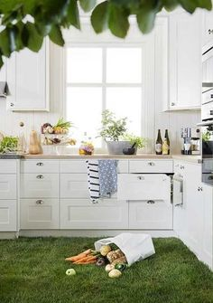 green carpet made with grass and indoor plants in kitchen with white cabinets--SERIOUSLY...Who wants to cut grass INSIDE the house too?? Would be cool with sythetique grass insted