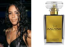 Welcome to Ochiasbullet's Blog: Aaliyah's Brother and Mother to Launch Tribute Per...