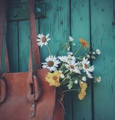 this is life Ivy House, Flower Aesthetic, Foto Art, Vintage Flowers, Flower Art, Wild Flowers, Beautiful Flowers, Photos, Painting