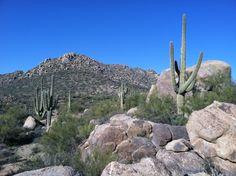 Tonto National Forest. Scottsdale AZ