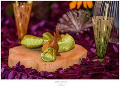 { zootopia themed birthday style shoot | event photography } | CHRIS JORIANN {fine art} PHOTOGRAPHY | b l o g