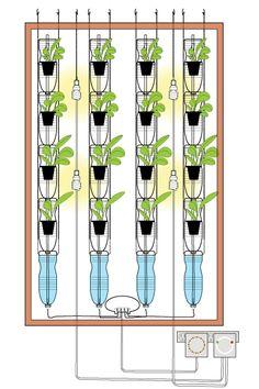 Verticle water bottle Gardening
