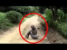 REAL HYBRID ALIEN CREATURES CAUGHT ON TAPE 2015 NEW (VERY SCARY!!)