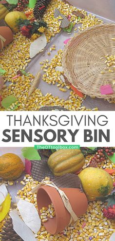 Such a fun idea for building fine motor skills, exploring the textures of Fall, and talking about gratitude with kids! This Thanksgiving sensory bin was a huge hit with my kids and I loved seeing them work on scooping, pouring, and other fine motor, eye-hand coordination, and bilateral coordination skills!