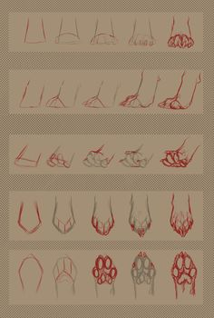 Dog Paw (Stock / Tutorial) by dinoPharaoh.deviantart.com on @deviantART