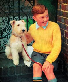 Vintage undated knitting pattern by Lee Target featuring a Wire Fox Terrier