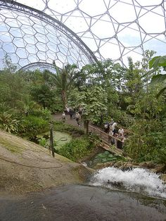 Eden Project, Cornwall - inside the domes