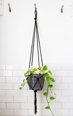 DIY Hangers : DIY Modern Macrame Hanging Planter