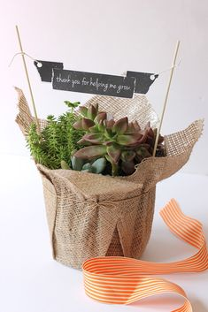 10 terrific DIY Teacher gift ideas that remind them of how much they help our kids grow: Love the sophisticated look of the free printable banner here in a burlap-wrapped potted | Printable from Alice & Lois
