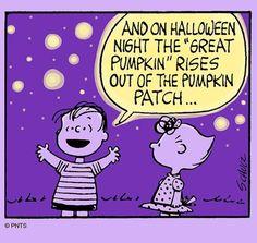 Awaiting the Great Pumpkin 🎃 Charlie Brown Thanksgiving, Charlie Brown Halloween, Snoopy Halloween, Charlie Brown And Snoopy, Halloween Night, Happy Halloween, Peanuts Cartoon, Peanuts Gang, Peanut Pictures