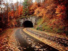 hiddenshadow1231:  Looks like the Blue Ridge Parkway near...