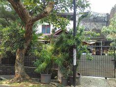 Rumah Dijual Cluster Serua Indah Ciputat Tangsel #Rumahdijual #JualRumah #Rumah #Tangsel #Ciputat #Tangerang.