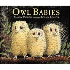 Owl Babies by Martin Waddell, illustrated by Patrick Benson, is a classic children's picture book. A timeless story that children can relate to, with stunning illustrations.