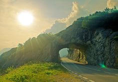 Beautiful Car Tunnel