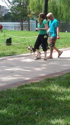 Beautiful Day at Barktoberfest, Lake Eola, Downtown Orlando