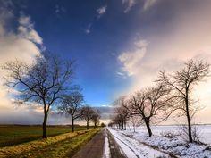 """Autumn and winter photo print wall art - seasons change - nature photography - montage - """"A Change of Seasons"""" by Zsolt Zsigmond - SKU0046"""