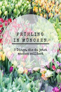 5 Tipps, was du im Frühling in München unternehmen kannst.