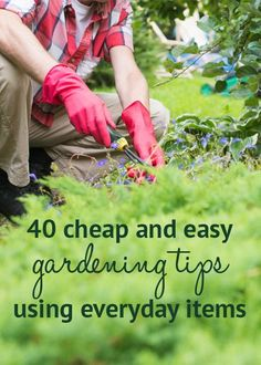 40 cheap and easy gardening tips using everyday items. Get ahead in the garden with these easy gardening tips - using objects you already have lying around! Includes advice on feeding plants and stopping pests: