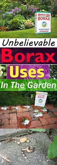 Borax is used for va...
