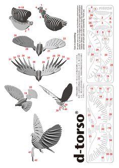 Pigeon110_white