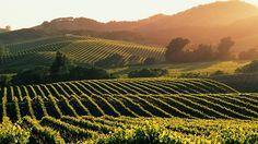 Napa, California  Romance Vacation Someday