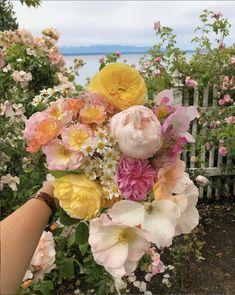 Victoria Magazine, Fern Frond, My Favorite Color, Flower Art, Flower Power, Flower Arrangements, Wedding Flowers, Floral Wreath, Bouquet