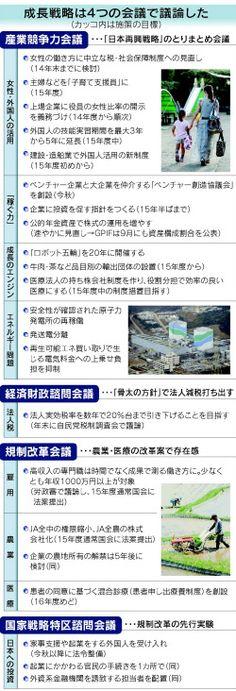 首相「持続的成長へ政策やり抜く」 成長戦略素案  :日本経済新聞