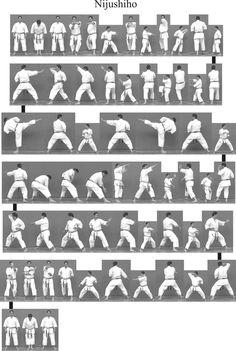 Bitmap_in_1y_Nijushiho Kyokushin Karate, Shotokan Karate, Karate Kata, Karate Club, Kung Fu Martial Arts, Chinese Martial Arts, Aikido, Japanese Karate, Goju Ryu