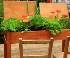 Old school desk upcycled into a planter.  Creative Commons license photo credit: jo-h