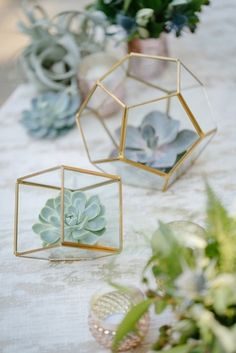 trendy wedding decor succulents in geometric terrariums wedding decor rustic