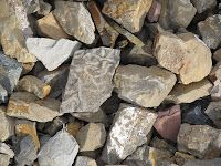 Finding Graptolite fossils, Beatty, NV.  Read more:  http://jedidiahfree.blogspot.com/2012/08/deserts-plankton-and-bighorn-sheep.html#.UhLpd9K-2uI.  RocksInMyHead™ is the World's Greatest Rock, Prospecting & Outdoor Education Company.   For gold prospecting, rockhounding, lapidary and geology tools, and jewelry making supplies, equipment, books, maps, great outdoor gear, plus lots of great rocks, minerals, fossils, & meteorites, go to our website http://RocksInMyHead.com.