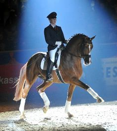 Wish I knew who they are. This mare is gorgeous!