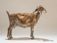 Goat Sculpture - Nick Mackman Animal Sculpture
