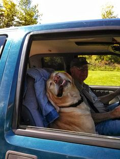 Ain't nothing mo relaxin than riding with your bud