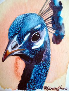 ACEO Limited Edition Brilliant Bird in watercolor by annalee377