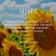 It is not those that are #strongest who #survive, but those who can adapt.