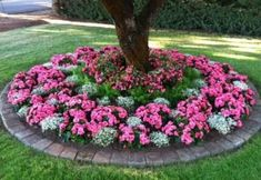 (49+) Front Yard Landscaping Ideas   Simple Design for Garden & Beds