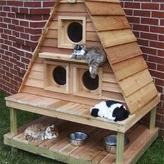 Dieren | katten slaap huis Door HildaBakkerSant - if I lived in the country I would definitely build one of these...