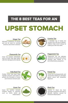 The 8 Best Teas for an Upset Stomach - Cup & Leaf tea Have an upset stomach? These 8 teas can all help cure a rumbly tummy and soothe that upset stomach feeling that might come from sickness, bad food, diarrhea, or anything else. Calendula Benefits, Matcha Benefits, Lemon Benefits, Coconut Health Benefits, Chamomile Tea Benefits, Benefits Of Ginger Tea, Black Tea Benefits, Peppermint Tea Benefits, Jasmine Green Tea Benefits