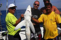 Hai angeln Algarve Portugal | Angelurlaubtipps.de