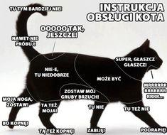 Znalezione obrazy dla zapytania jak zrobić drapak dla kota instrukcja
